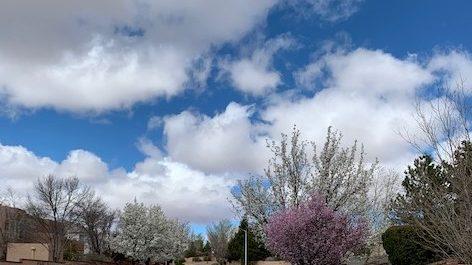 Westside clouds